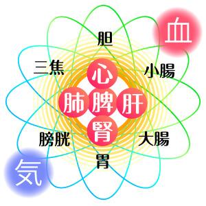 五臓六腑・経絡・気・血